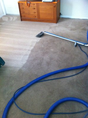 Great carpet cleaning results